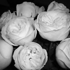 Simply roses by Arleen Colon