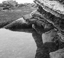 Tide Pool by fsmitchellphoto