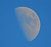 The Moon  (earlier tonight!) by dougie1