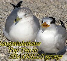 Congrats , top 10 by LudaNayvelt