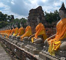 Robed Buddhas by Dave Lloyd