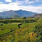 New Zealand By Ijam by ijam357