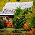 Autumn Splendour  by Kathryn Potempski