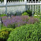 Garden in Long Island by ValeriesGallery