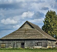 Skagit Barn by Appel