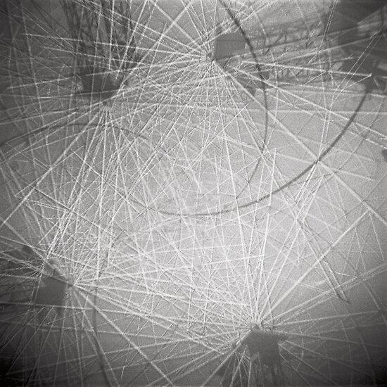 Web by Haydn Williams