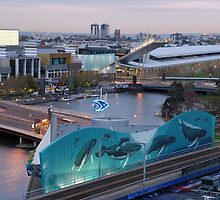 Melbourne Southbank, Early Morning by rhizome