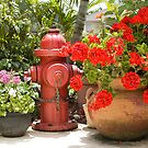 Garden Hydrant by Donna Adamski