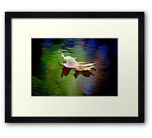Floating Fall Leaf... Framed Print