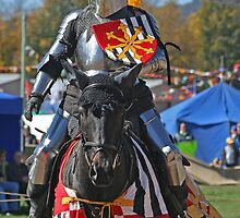 Jousting Beauty by Kellea Croft