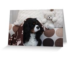Charlie Girl Waking up Greeting Card