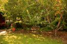 Garden at Ford House, Bridgetown, Western Australia by Elaine Teague