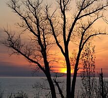 Day End Along the Lake Michigan Coast by BarbL