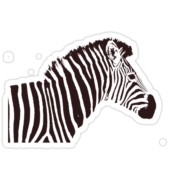 Zed the Zebra by rabeeker