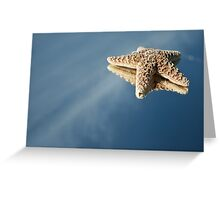StarFish Reflections Greeting Card