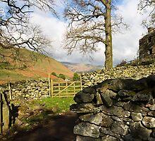 Martindale Farm by Paul Davey