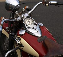 OLD  HARLEY PENGUIN TASMANIA by Tom McDonnell