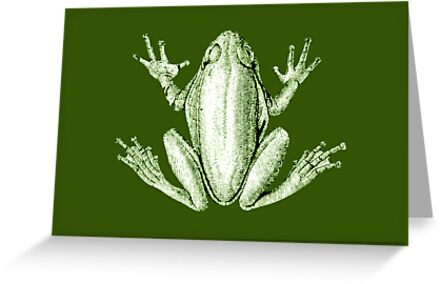 frog vintage card by Vana Shipton