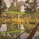 Bridges over the Blackwood River, Bridgetown, Western Australia by Elaine Teague