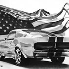 Mustang &amp; Flag by John Harding