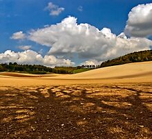 North Downs Way 7 by gollum1985