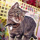 Dolly Cat by LuvlyGrafix