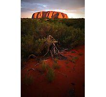 Uluru at Sunset Photographic Print