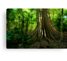 Fig Forest Canvas Print