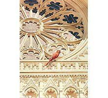 """The Cardinal"" Watercolor Photographic Print"