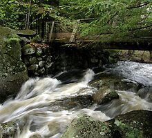 Water Under The Bridge by Len Bomba