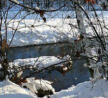 Winter Scenes, River Fresco by SeanVan