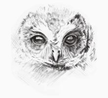 Owl Sketch by Johdie Fairweather