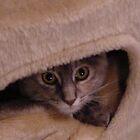Boo Peek by Angela Harelson