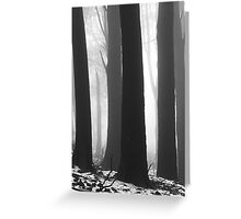 BLACK and WHITE. Greeting Card