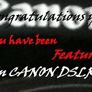 Banner for Canon DSLR by Larry Trupp