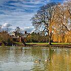 River Avon by gollum1985