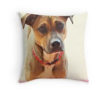 Chula Update! Throw Pillow
