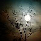 Luna Light by friartucker