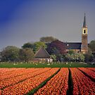 Holland in Spring by Jo Nijenhuis