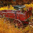 Wagon Wheels D by Mark Peduzie
