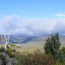 Vale of Belvoir (Cradle Mt area - Tasmania) by gaylene