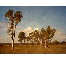 Thunderbolt Country - Uralla, Northern Tablelands, NSW, Australia Photographic Print