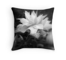 For everything, a reason Throw Pillow