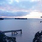 Sunkist Bay, New Zealand by Sue Cotton