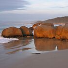 Tasmanian beach by Coastalbloke