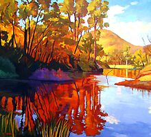 Wollombi Creek Gold by Guntis Jansons