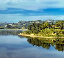 Lake of Corbara - Umbria - Italy by paolo1955