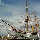 HMS Gannet by ChelseaBlue