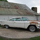 1958 Dodge Royal ~ Barn Sale Find by Sherry Hunt