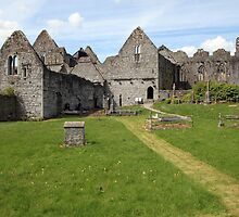 Askeaton Abbey by John Quinn